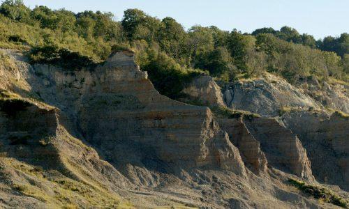 Les falaises des Vaches Noires : un site paléontologique d'exception