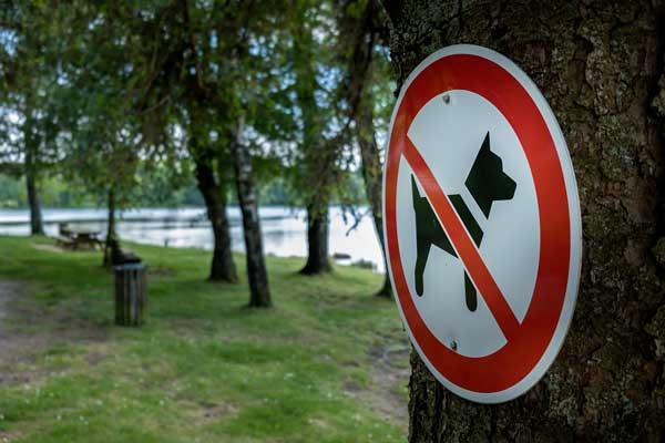 Règlementations concernant les animaux