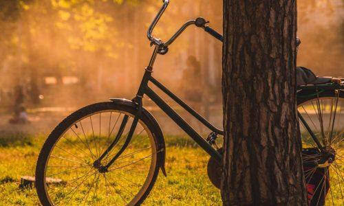 La mobilité éco-responsable