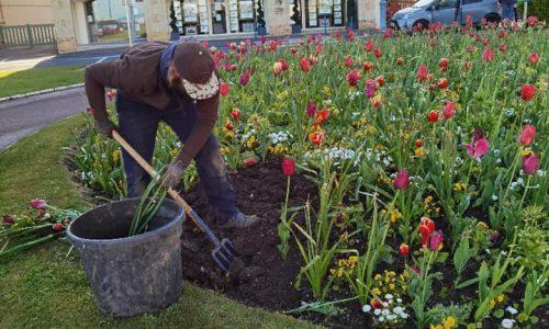 La Mairie à votre service : le service espaces verts de notre ville est intervenu cette semaine aux 4 coins de la ville