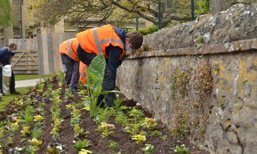LA MAIRIE A VOTRE SERVICE : nos services s'assurent du bon fleurissement de notre ville