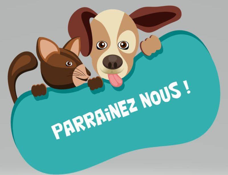 https://www.villers-sur-mer.fr/wp-content/uploads/2021/08/parrainage-800x615.jpg