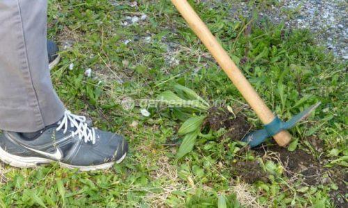 PROPRETÉ : arrêté municipal demandant aux Villersois de nettoyer et désherber devant chez eux