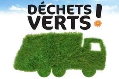 PROPRETÉ : information sur la collecte des déchets verts. Lisez attentivement